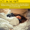 what to do before a sleepless workweek wtf fun