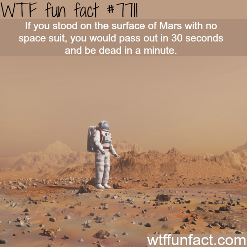 What will happen if you stand on surface of Mars without a spacesuit - WTF fun facts