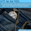 whats the small pocket of your jeans for wtf