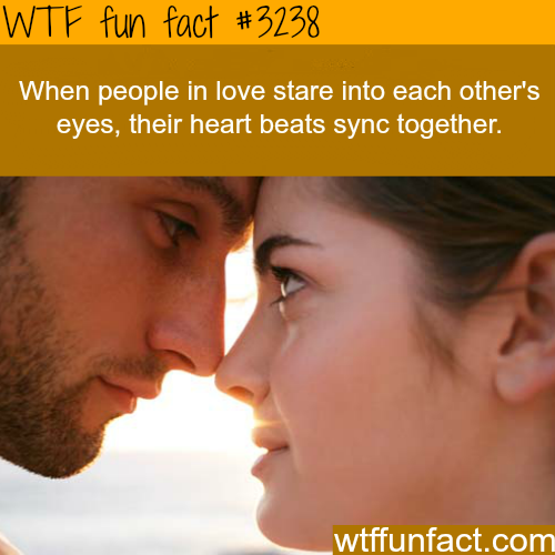 When couples stare into each other -WTF fun facts