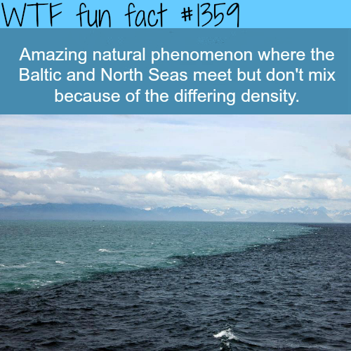 Where Two seas don't mix…nature facts