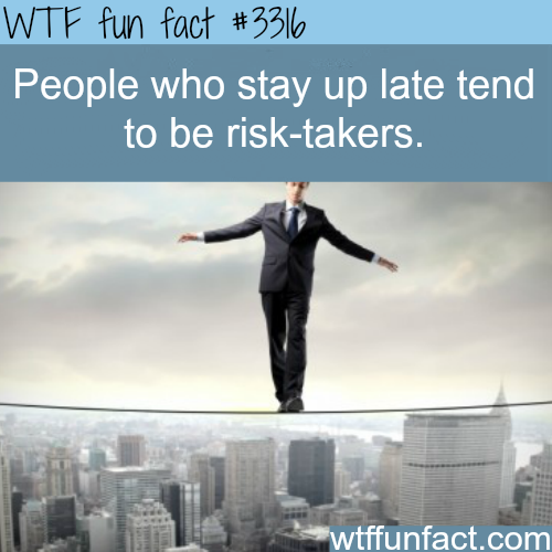 Who are the risk takers -  WTF fun facts