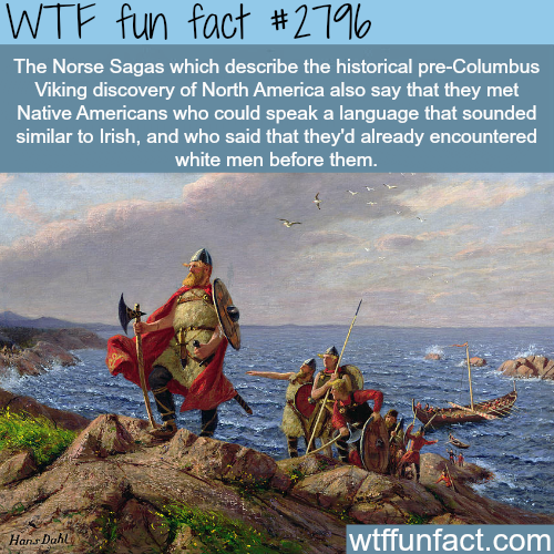 Who discovered America first - WTF fun facts