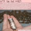 why coins smell when you hold them wtf fun facts