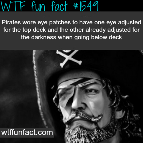 why did pirates wear eye patches? - wtf fun facts