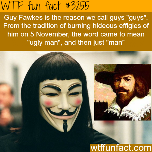 "Why do call guys ""guys""? -  WTF fun facts"