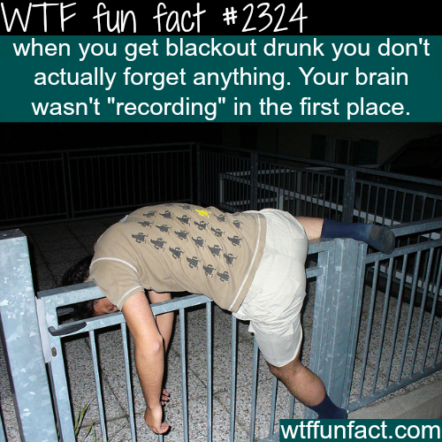 Why do you forget when you drink? -WTF funfacts