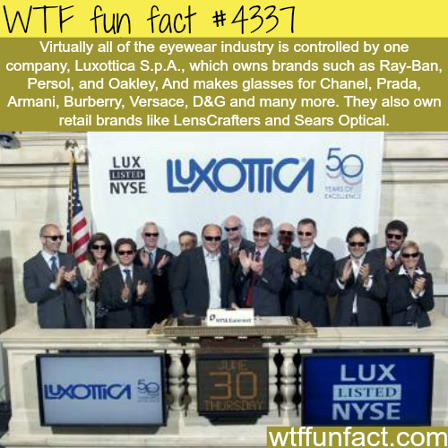 Why eyeglasses are so expensive? -  WTF fun facts