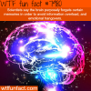 why forgetting is good sometimes wtf fun fact