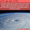 why hurricanes have human names wtf fun facts