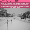 why it gets quite when it snows wtf fun facts