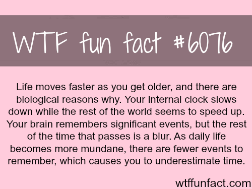 Why life seems like it's moving faster - WTF fun facts