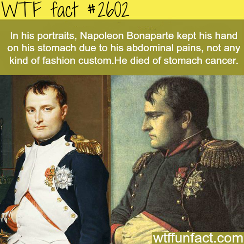 Why Napoleon kept his hands on his stomach - WTF fun facts