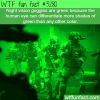 why night vision goggles are green