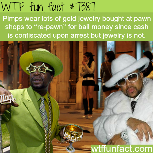 Why pimps wear so much jewelry - WTF fun facts