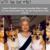 why queen elizabeth stopped breeding corgis wtf