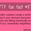 why roller coasters create a sinking feeling wtf