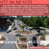 why roundabouts are better than signaled intersections