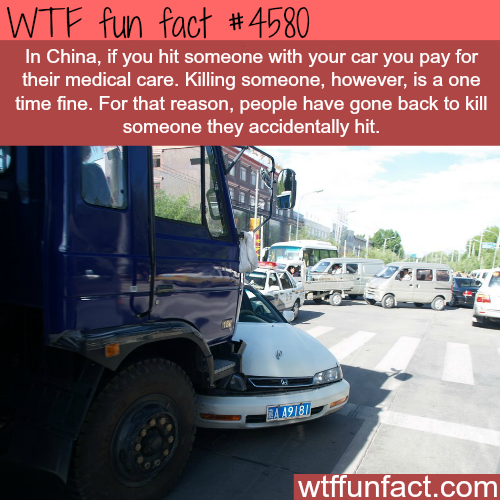 Why some Chinese drivers choose to kill the person they hit -   WTF fun facts