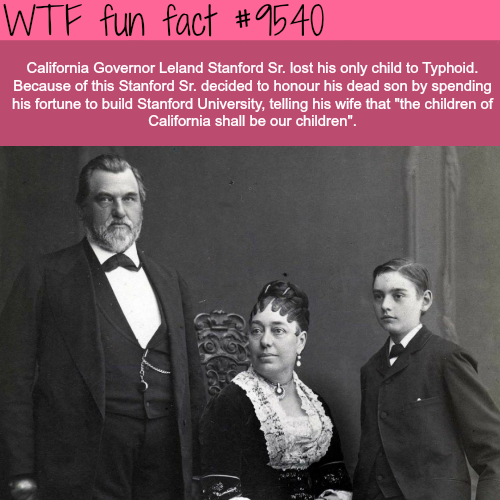 Why Stanford University was built - WTF fun fact