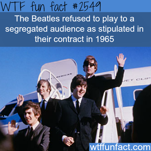 Why the beatles are awesome - WTF fun facts