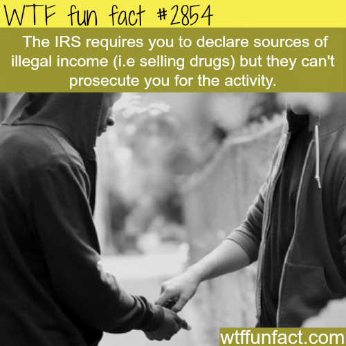 Why the IRS is the worst -  WTF fun facts