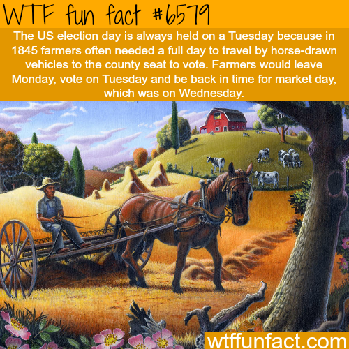 Why the U.S. elections are always held on Tuesdays - WTF fun facts
