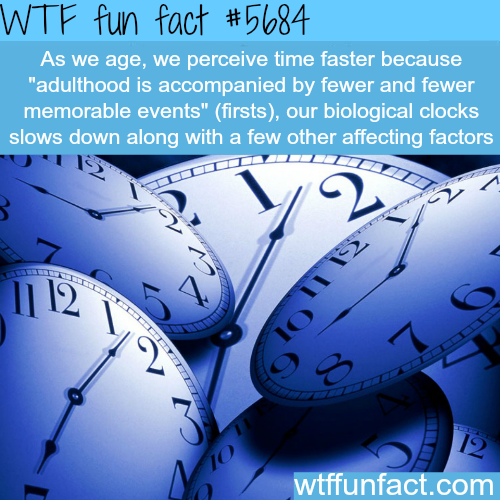 Why time is moving fast - WTF fun fact