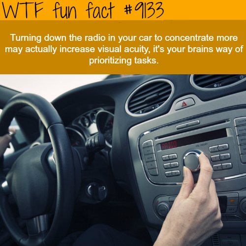 Why we turn down the radio when we are lost - WTF fun fact