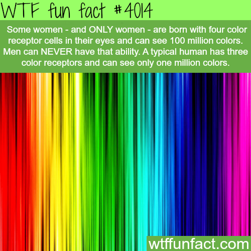 Why women see more colors than men - WTF fun facts