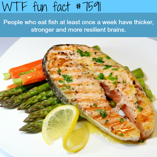 Why you should eat fish - WTF fun fact