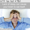 why you should get enough sleep wtf fun fact
