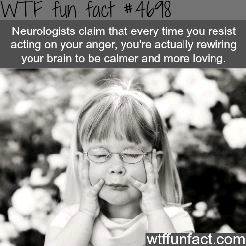 Why you should resist your acting on your anger - WTF fun facts