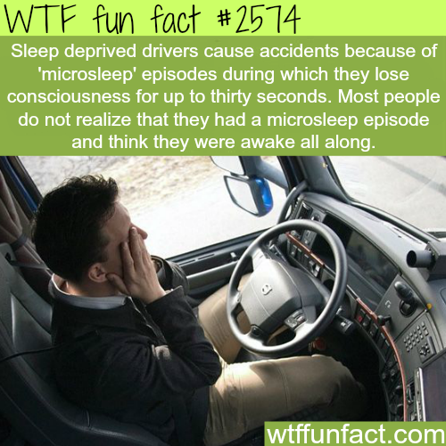 Why you shouldn't be sleep deprived and drive - WTF fun facts