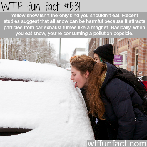 Why you shouldn't eat snow - WTF fun facts