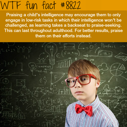 Why you shouldn't praise a child intelligence - WTF fun facts