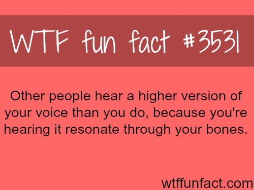 Why you think your voice is ugly? - WTF fun facts
