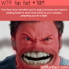 why your face turns red when you get angry wtf