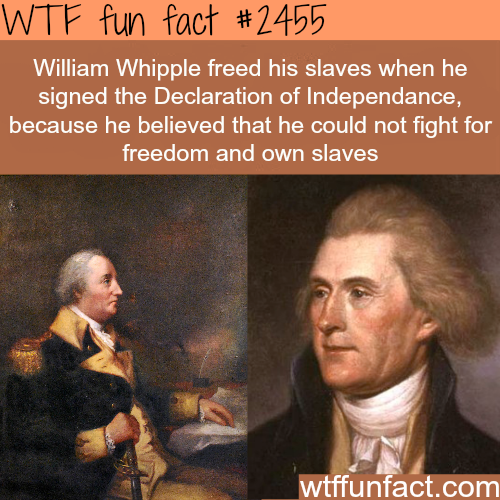 William Whipple and Declaration of Independence- WTF funfacts