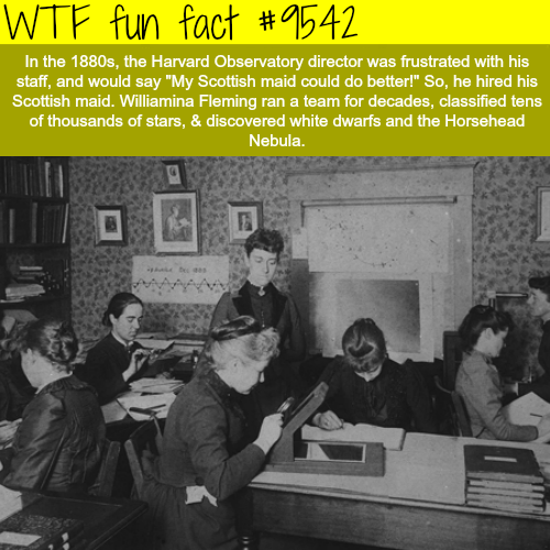 Williamina Fleming - WTF fun fact