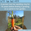 woman finds her wedding ring growing on a carrot