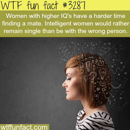 Women with higher IQ -  WTF fun facts