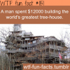 world greatest tree house