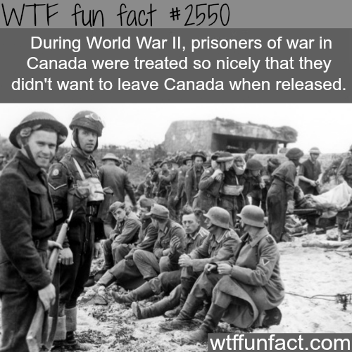 World War 2 Canada's prisoners - WTF fun facts