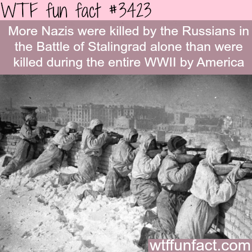 World War 2 facts -  WTF fun facts