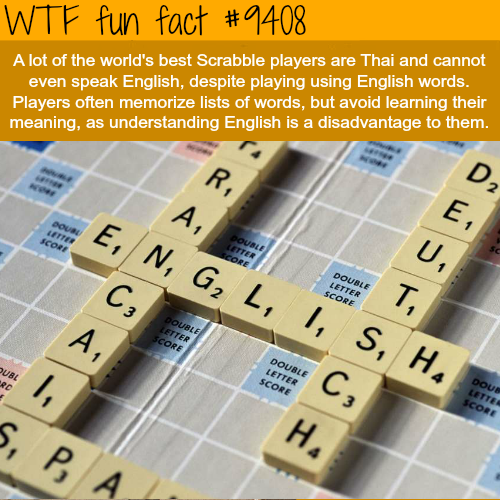 World's best Scrabble players - WTF fun facts