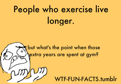 WTF-FUN-FACTS=
