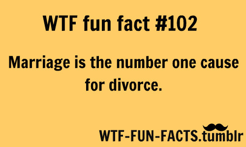 WTF-FUN-FACTS ! NOT a random facts blog