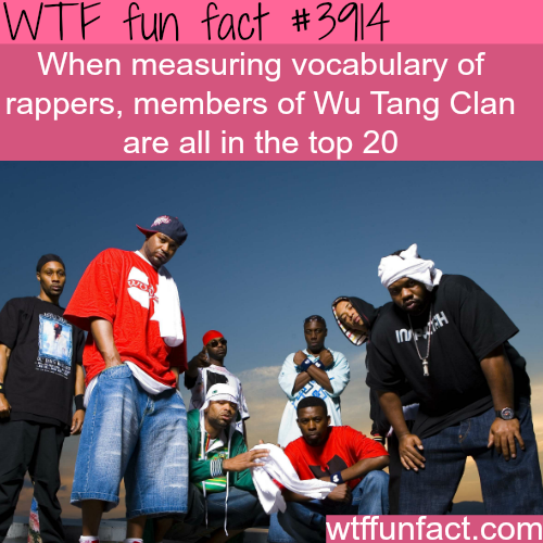 Wu Tang Clan - WTF fun facts