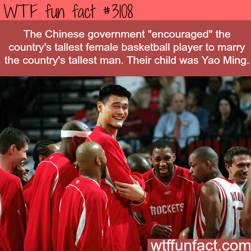 Yao Ming Parents -WTF fun facts